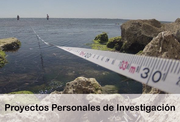 proyectos personales investigacion ies sierra guadarrama